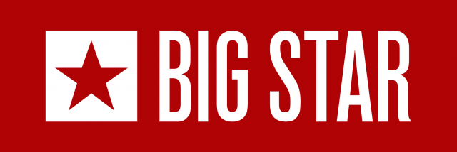 BIG STAR LTD.